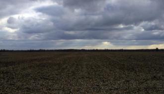 Более 55 гектаров земли в Нетешине арендуют с нарушениями