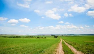 На Хмельнитчине незаконно использовали более 150 гектаров земли для проведения научных исследований