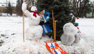 В Шепетовке неизвестные похитили украшения с городской елки