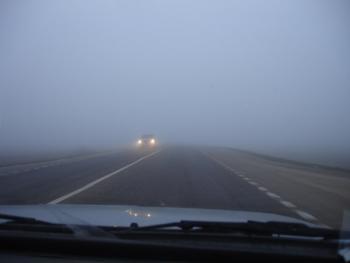 Жителей предупреждают о густом тумане 20 декабря
