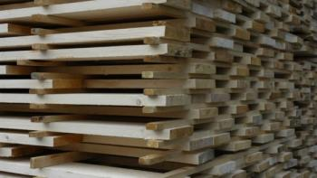 Segezha Group построит на Сахалине завод по обработке дерева