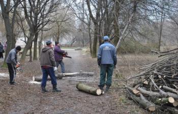В Хмельницком на улице Заводской омолаживают деревья