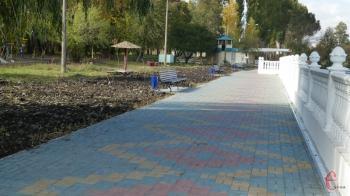 В областном центре ищут дизайнеров-добровольцев, которые обустроят аллею в парке Чекмана