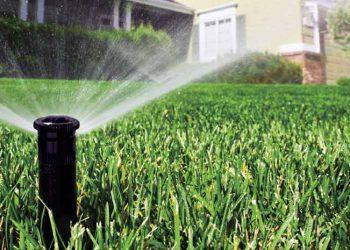 Как выбирать системы полива для сада и огорода